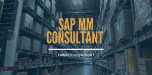 Consultant SAP MM